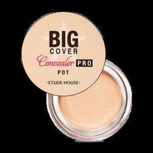 Big Cover Pot Concealer Pro Beige