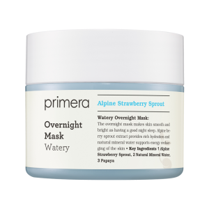 Watery Overnight Mask