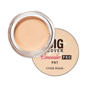 Big Cover Pot Concealer Pro Vanilla